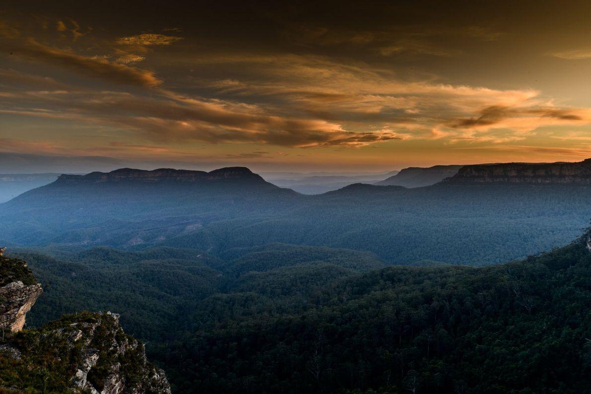 Der Nebel lichtet sich über den dichten Eukalyptuswäldern in den Blue Mountains von New South Wales ...