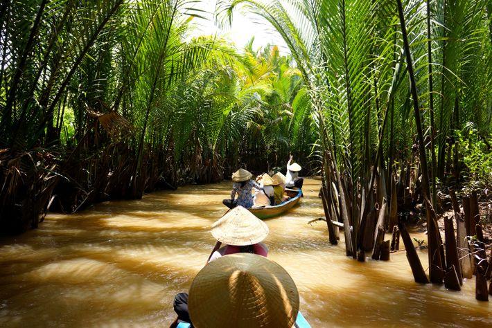 Es gibt zahlreiche Möglichkeiten, die schwimmenden Märkte, die hohen Palmen und den Artenreichtum des Mekong zu ...
