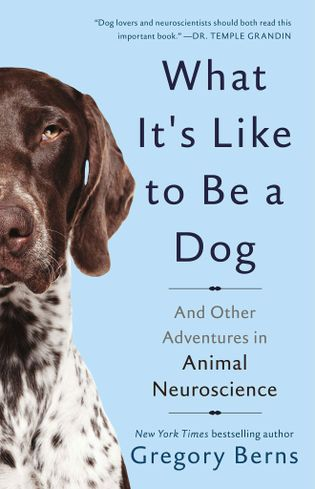 """""""What It's Like to Be a Dog"""" von Gregory Berns."""