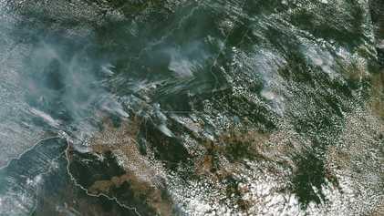 Rekordwaldbrände im Amazonas: Vorboten der Vernichtung