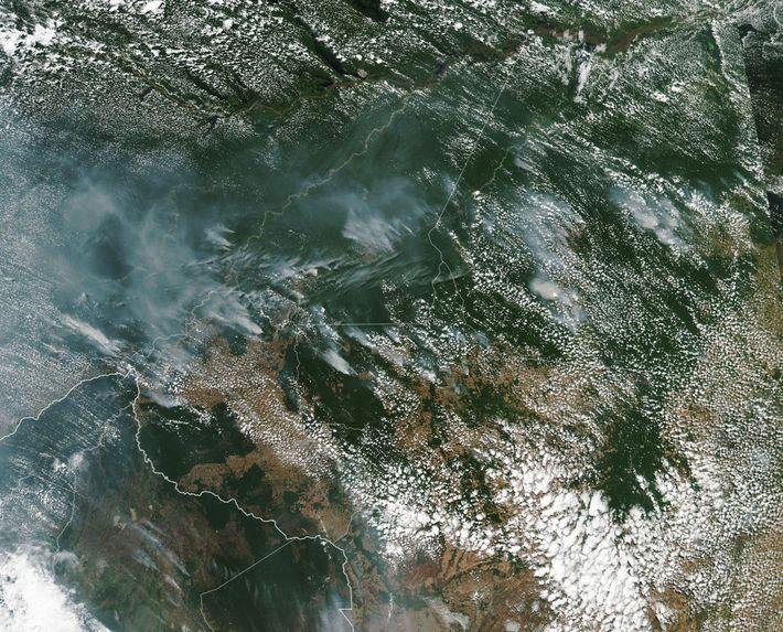 Auf diesem Satellitenbild der NASA sieht man den Rauch der Amazonas-Waldbrände.