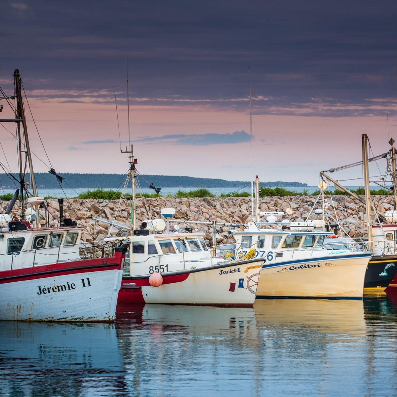 Farbenfrohe Fischerboote liegen im Hafen von Havre Saint-Pierre.
