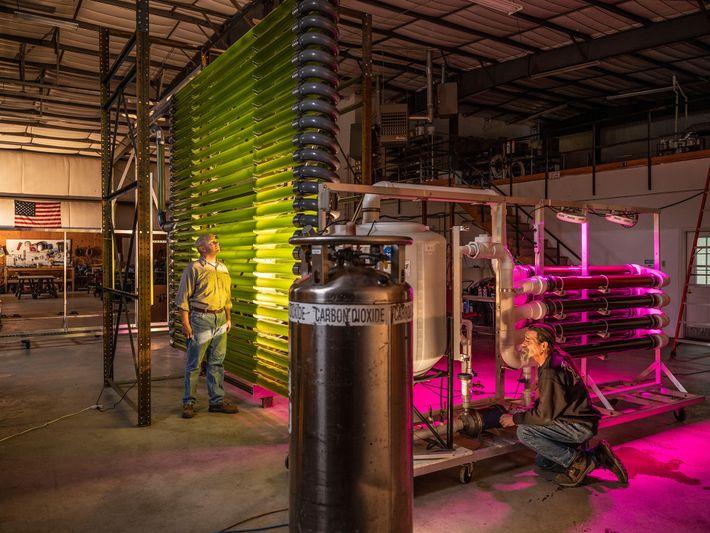 Kreislaufwirtschaft Abwasser Algen