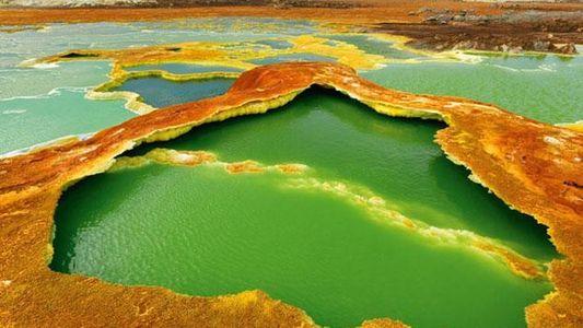 Galerie: Das Salz und die Erde in der Afar-Senke