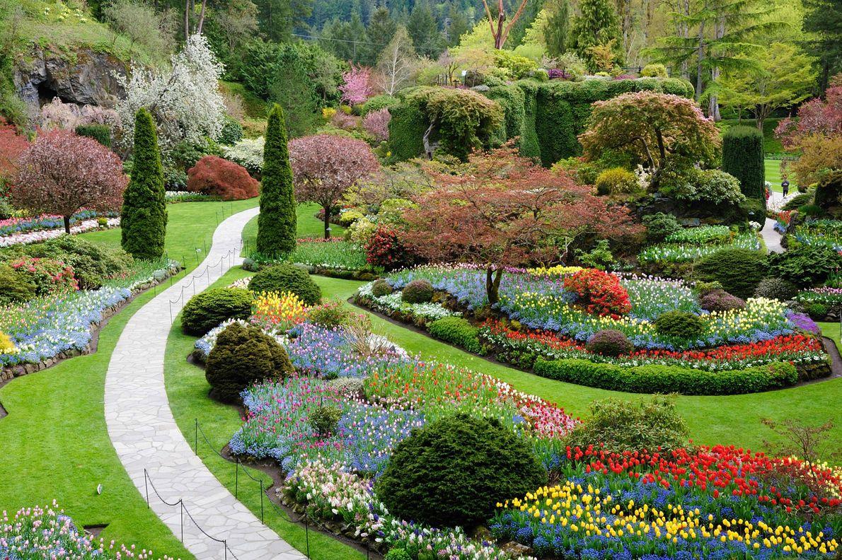 Die Versunkenen Gärten der Butchart Gardens.
