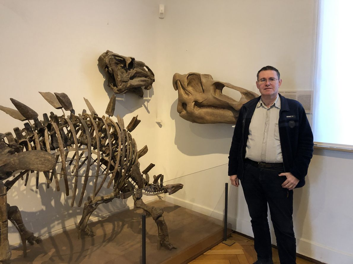 Was hat Edmontosaurus am liebsten gefressen? Paläobiologe Prof. Dr. Hervé Bocherens im Porträt