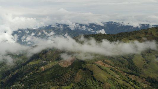 Kolumbianischer Kaffee in Zeiten des Klimawandels