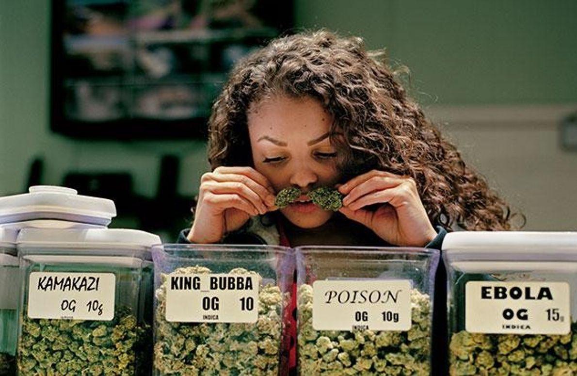 Cannabis und die Risiken