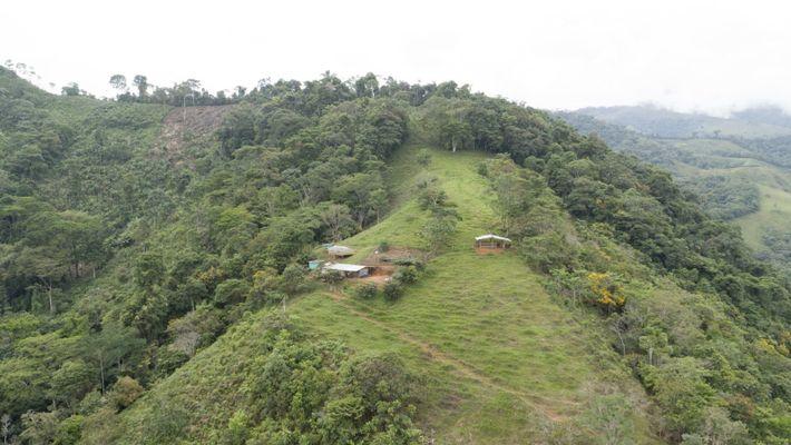 Die Region Caquetá in Kolumbien gilt als Tor zum Amazonas. Klima, Höhenlage und Boden tragen zu ...