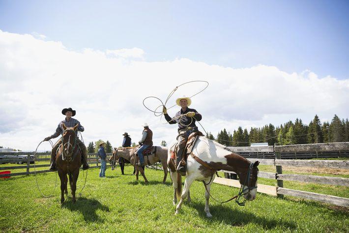 Viehhirten schwingen auf ihren Pferden die Lassos auf einer sonnigen Ranch in Cochrane.