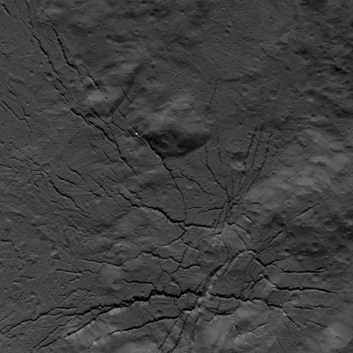 Occator-Krater, Zwergplanet Ceres