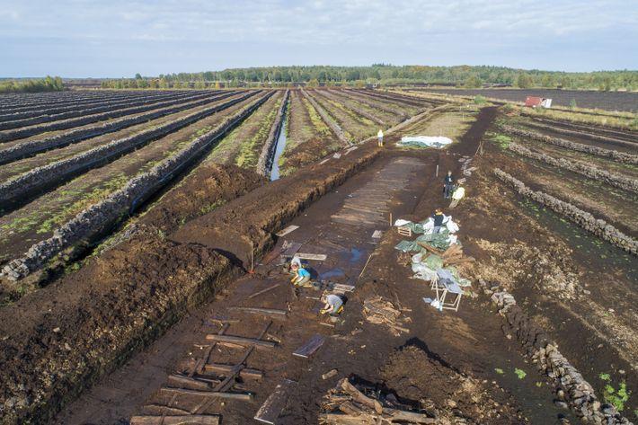 Ausgrabungsstätte der Bohlenwege