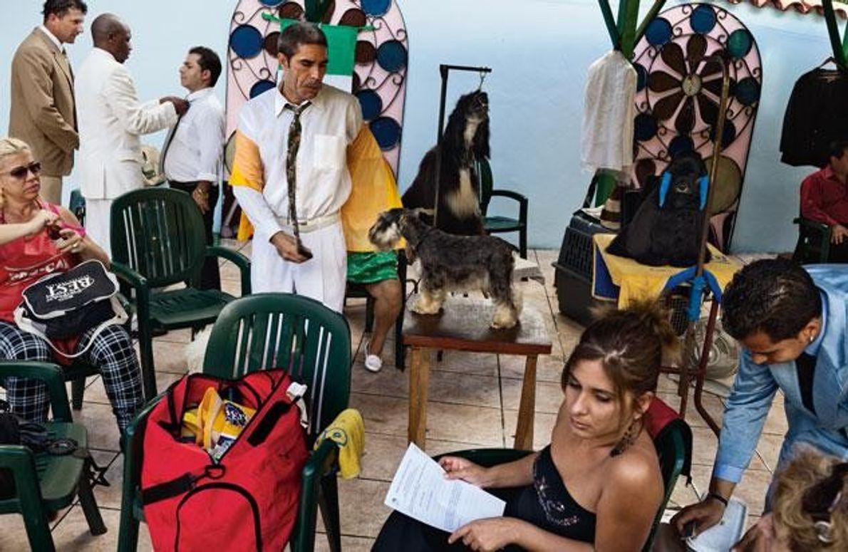 """Bei der """"Champion der Champions""""-Show in Havanna warten Hundebesitzer auf ihren Auftritt. Mit der richtigen Währung …"""