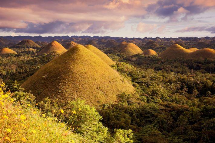 Foto der Chocolate Hills in Bohol, Philippinen