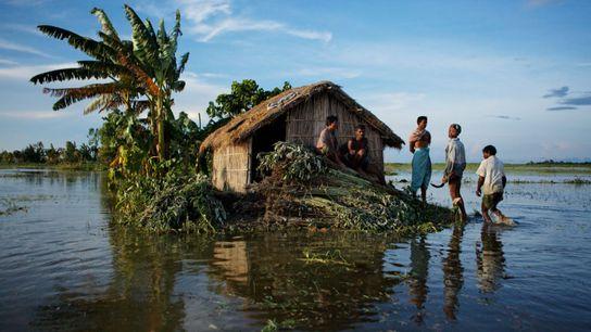 Dorfbewohner stehen auf Juteplantagen, umgeben von den überfluteten Häusern im Distrikt Gaibandha in Bangladesch. Das Land ...