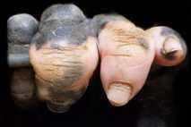 Menschenaffen Hand