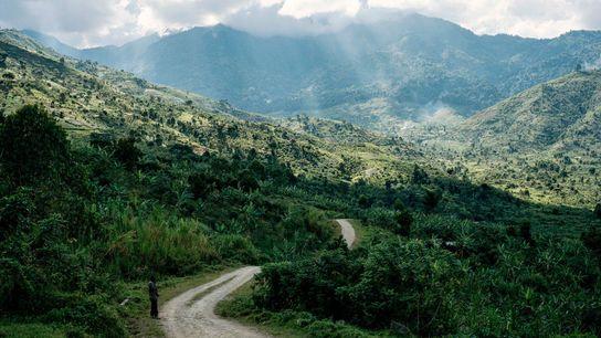 """Sonnenstrahlen durchbrechen die dichte Wolkendecke über dem Ruwenzori-Gebirge, dessen Name im lokalen ugandischen Dialekt """"Regenmacher"""" bedeutet. ..."""