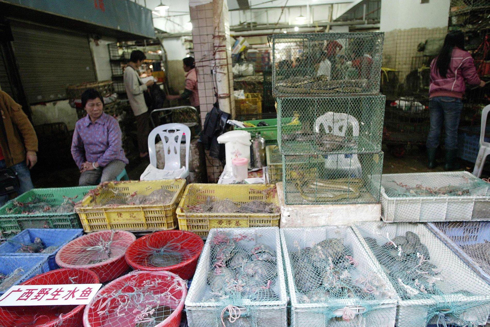 Markt in Shenzhen