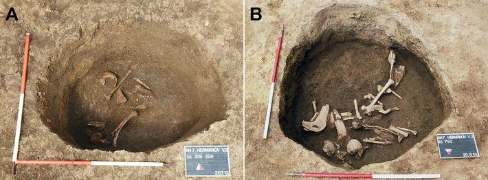 Das Grab bei Hermanov vinograd mit Tierknochen zu Beginn der Ausgrabungsarbeiten (rechts) und gegen Ende der ...