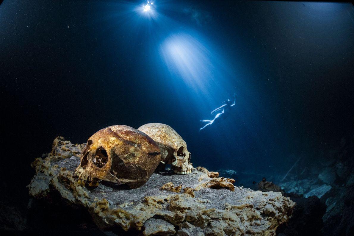 Ein Taucher schwimmt durch das Wasser des Punta Laguna Nature Reserve auf der Yucatán-Halbinsel, als vor ...