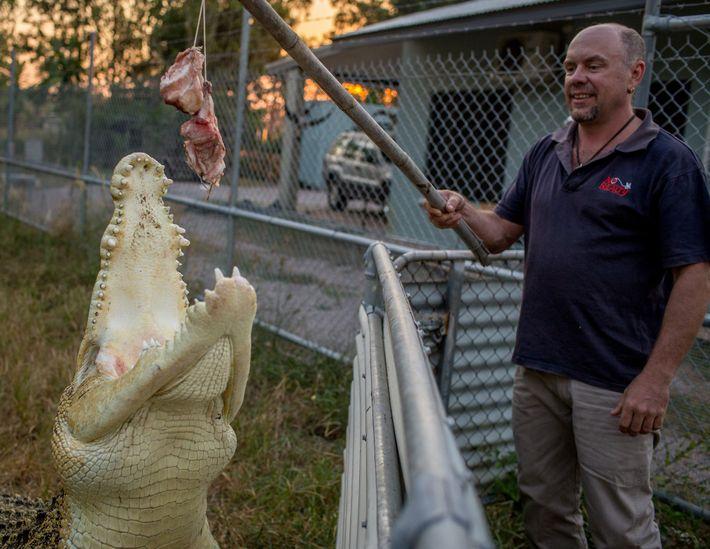 Mann mit Krokodil am Haken