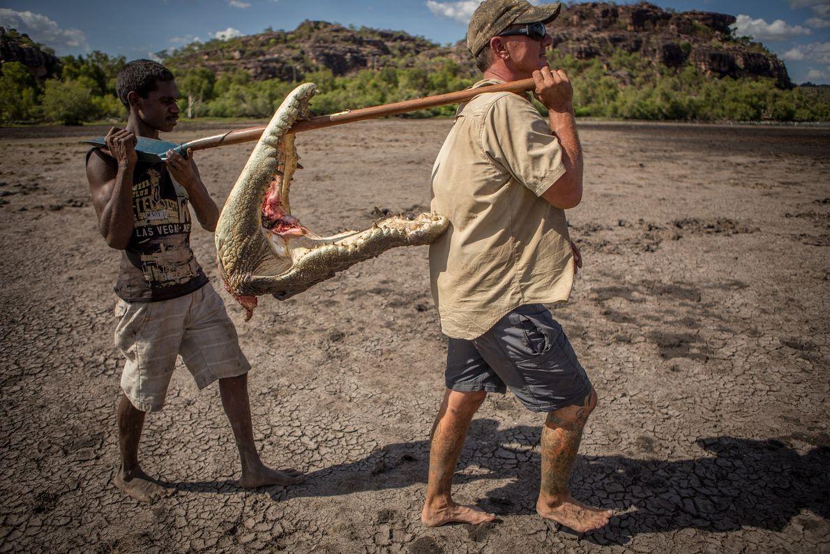 Männer tragen Krokodilskopf