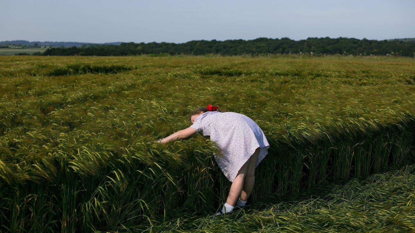 Ein junges Mädchen erkundet einen Kornkreis in der Nähe von Sixpenny Handley in Dorset, England.