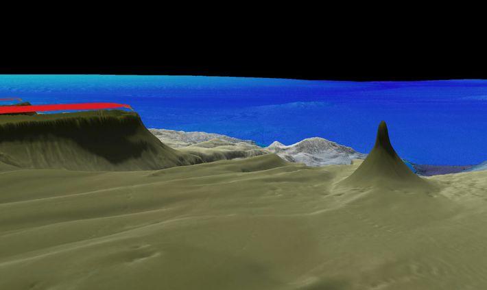 Der neu entdeckte Korallenturm, der etwa 500 Meter hoch ist, ist einer von insgesamt acht bekannten ...