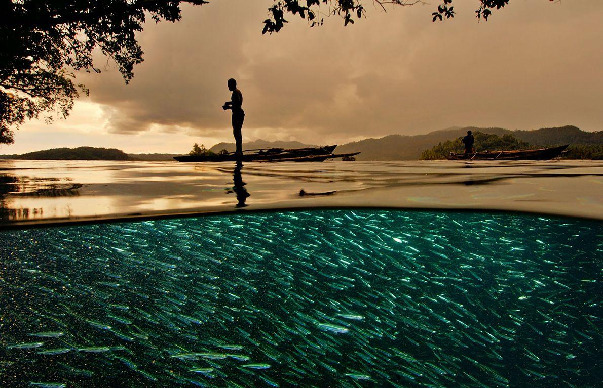 Ein Fischer steht auf seinem kleinen Auslegerkanu über einer Schule kleiner Köderfische im indonesischen Archipel Raja ...