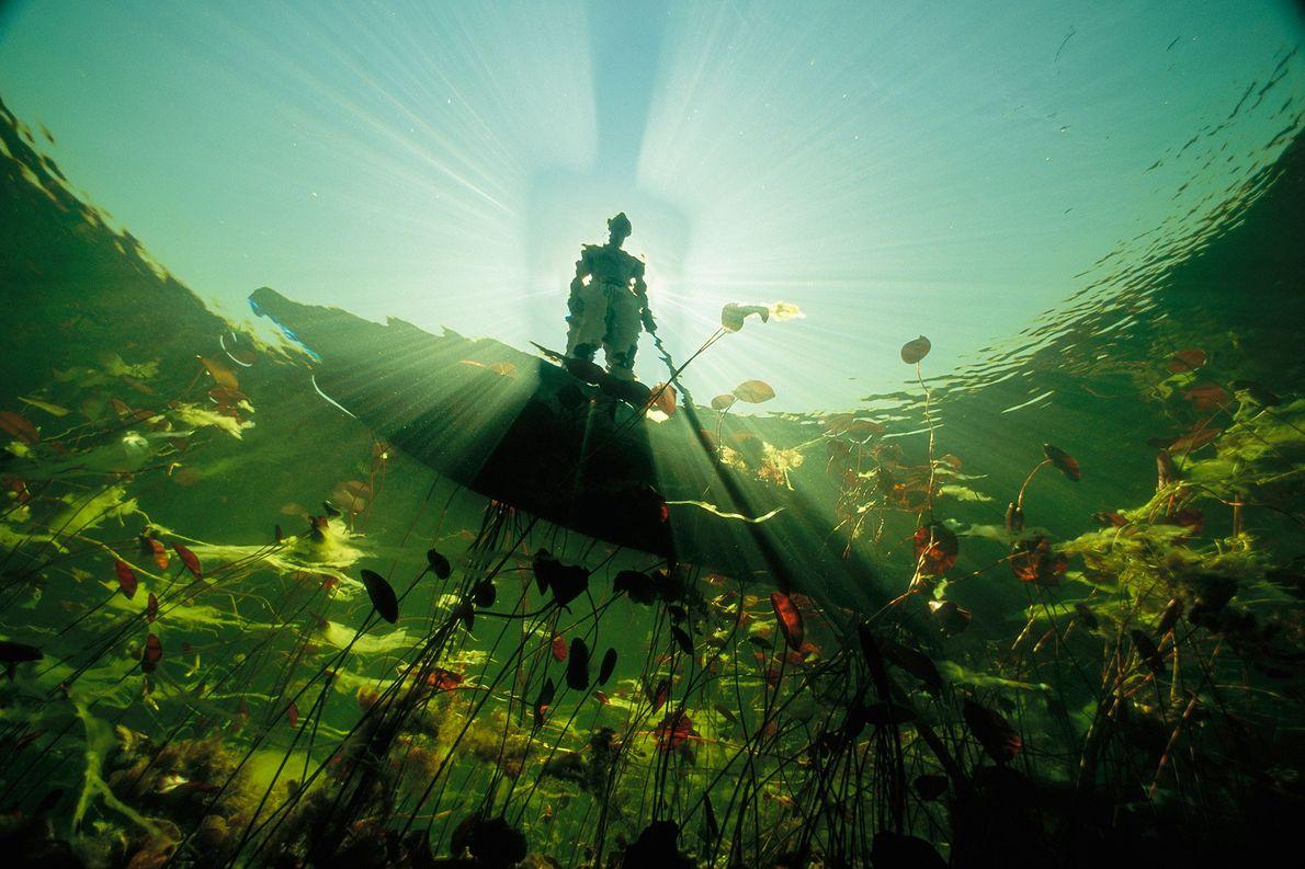 Ein Fischer der Bayei in einem Mokoro wirft einen langen Schatten auf das Wasser des Okavangodeltas ...