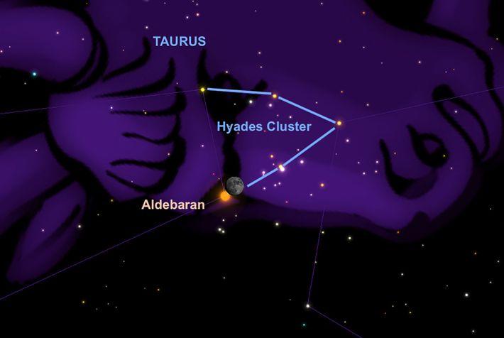 In der Nacht vom 30. auf den 31. Dezember wird der Stern Aldebaran kurz hinter der ...