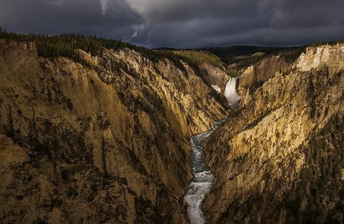 Der Grand Canyon of the Yellowstone