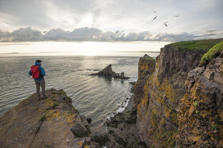 Die Aussicht auf die Bay of Fundy ist auf dem 12 Kilometer langen Klippenweg nach Cape ...