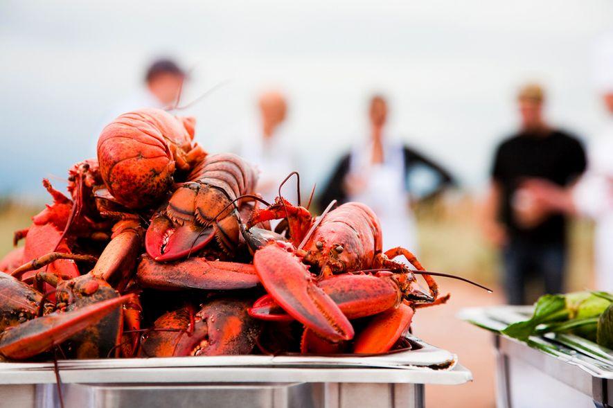 Das Fall Flavours Festival auf Prince Edward Island – auch bekannt als Kanadas Insel der kulinarischen ...