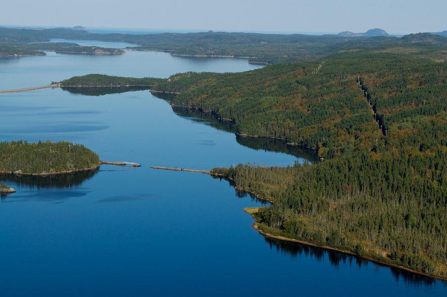Der Terra-Nova-Nationalpark ist der ideale Ort, um Kanadas wilde Seite zu erforschen und Elche, Bären und ...