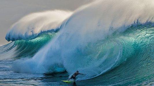 Galerie: Hawaii - Wellen des Protests