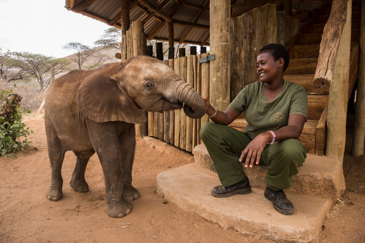 Leshongoro und Elefantenwaise Pokot