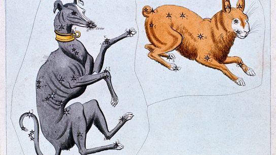 Die Menschen im antiken Griechenland bemerkten, dass Sirius, der hellste Stern im Großen Hund, im Juli ...