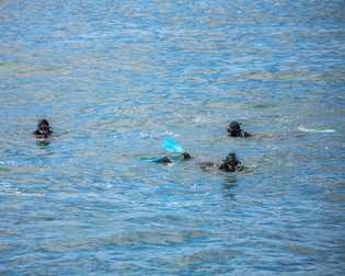 Kaikōura ist eine Küstenstadt auf der Südinsel Neuseelands. Sie ist für die zahlreichen Wildtiere vor ihren ...