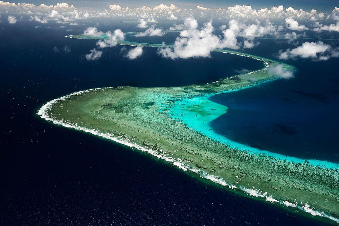 Der beste Weg, ein Riff zu verstehen, ist, es aus der Luft zu betrachten. Das Great ...