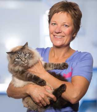 Dr. Angelika Drensler ist Fachärztin für Kleintiere und Vorsitzende der Arbeitsgruppe Katzenmedizin der Deutschen Veterinärmedizinischen Gesellschaft ...