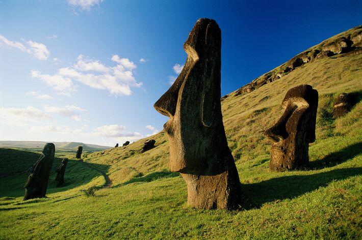 Über die Grashügel der Osterinsel sind Moai verteilt. Die Insel gehört zu Chile und liegt im ...