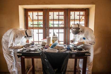 Tödliches Virus? Die Gefahr und Bekämpfung von Ebola