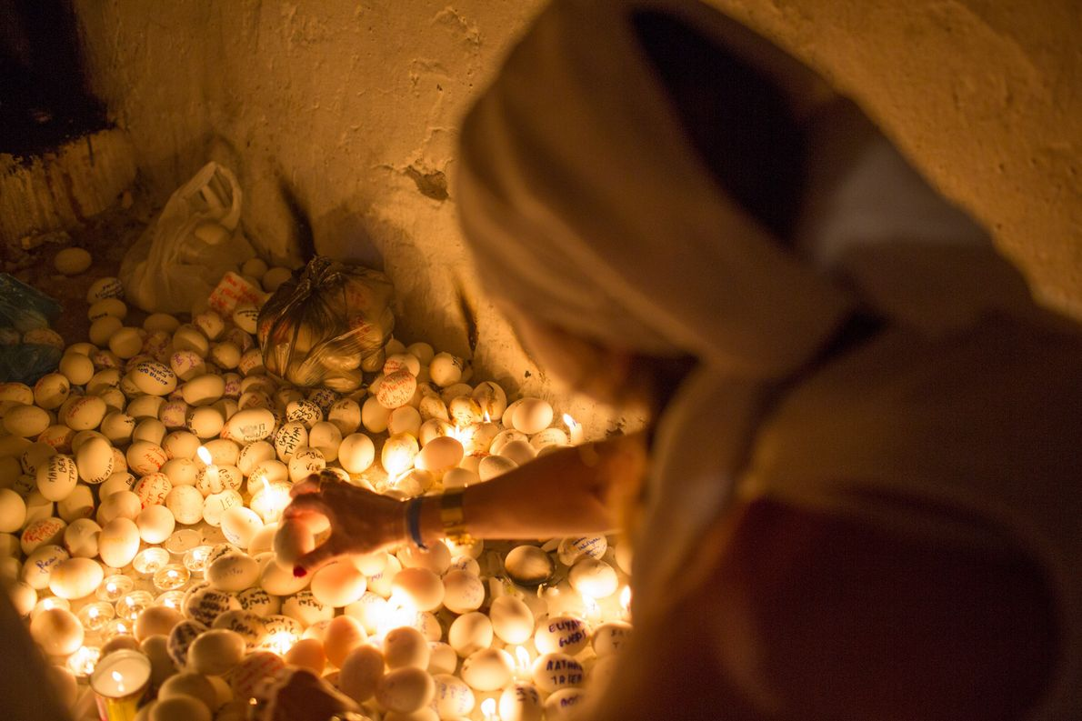 Pilger legt ein Ei auf Boden voller Eier