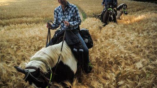 Abenteuer Deutschland: Einmal nach Sylt reiten