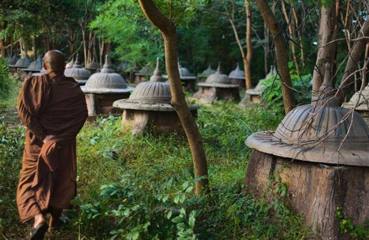 Elefantenfriedhof in Thailand