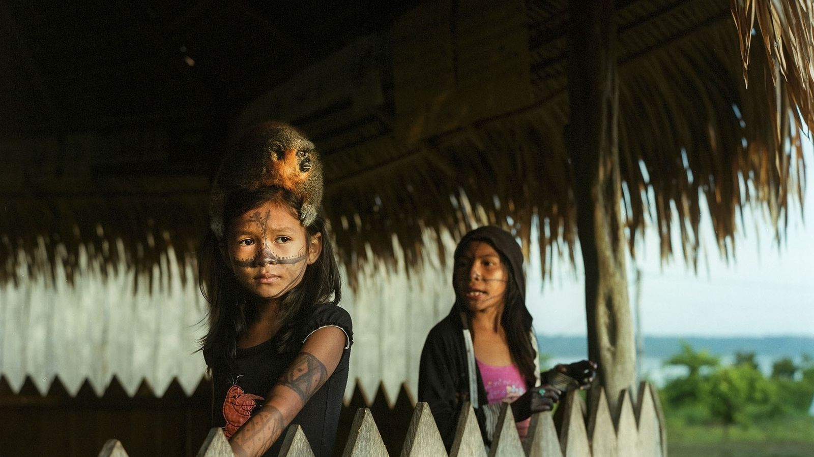Ein Munduruku-Mädchen und ihr Äffchen