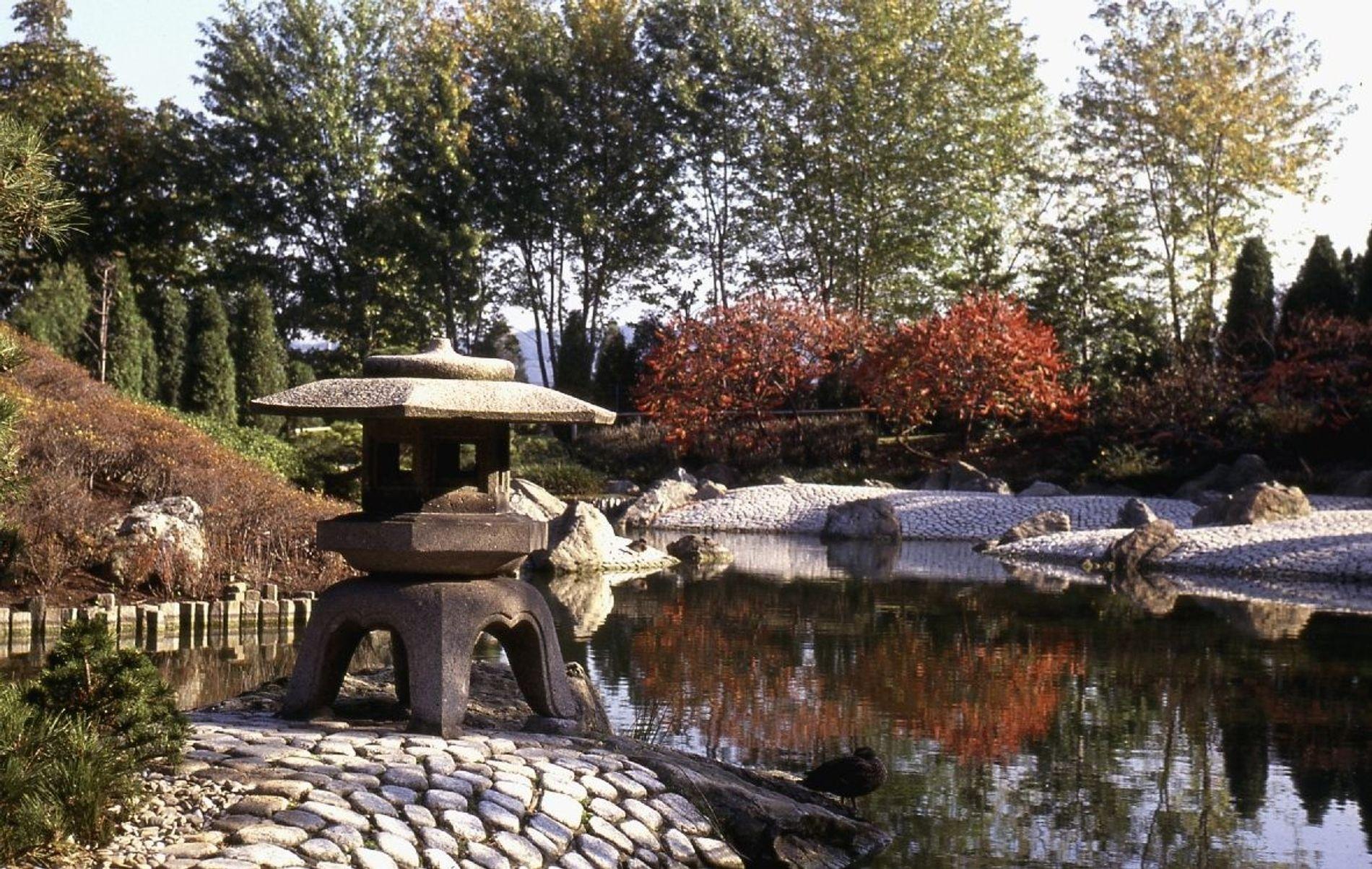 Zeugnis fernöstlicher Gartenbaukunst: Der japanische Garten in der Bonner Rheinaue