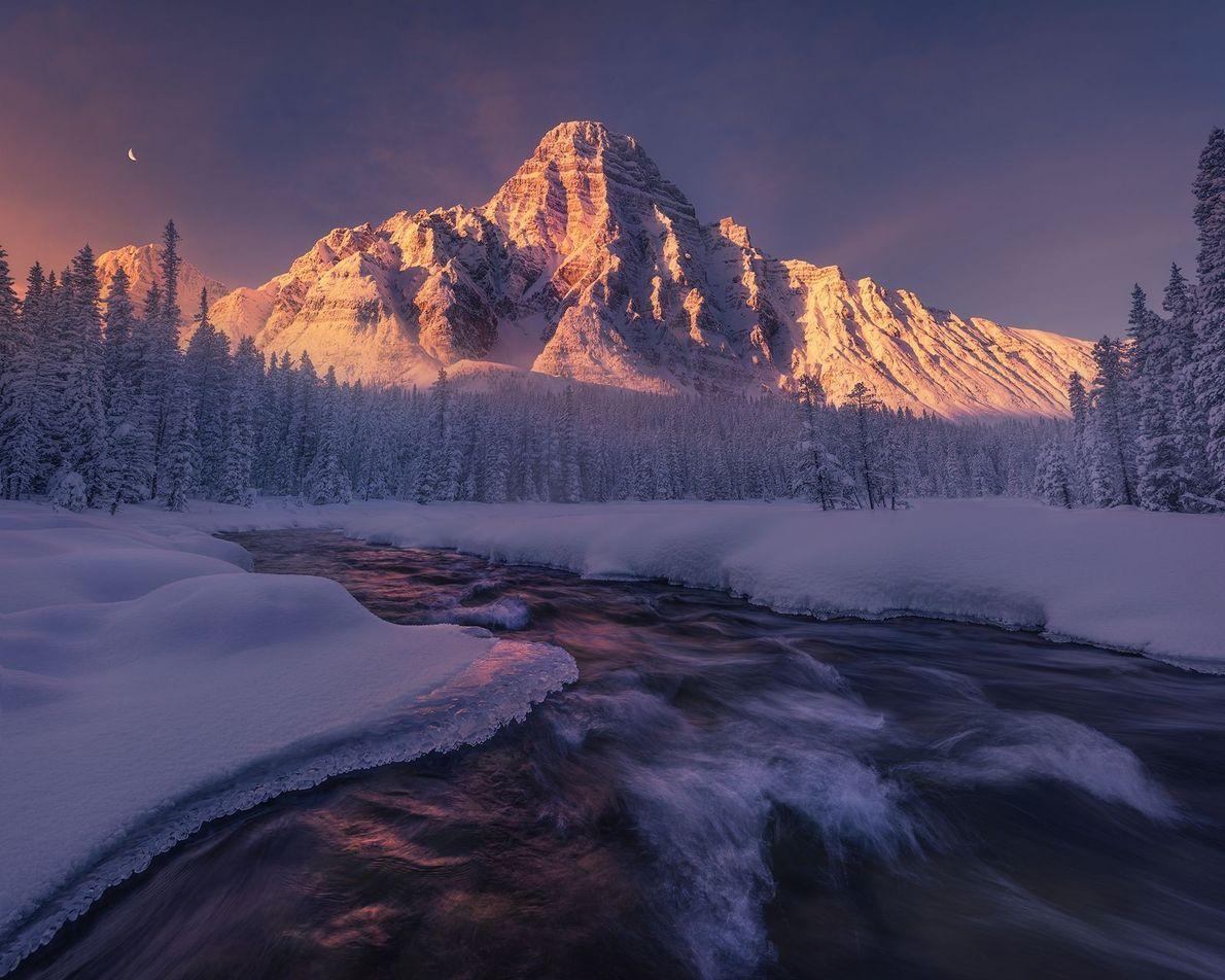 In den kanadischen Rocky Mountains legt der Sonnenaufgang einen lila Schleier über die Winterlandschaft.