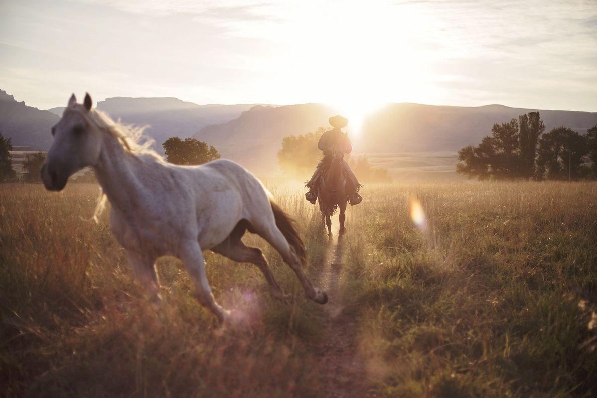 Morgens auf der Ranch